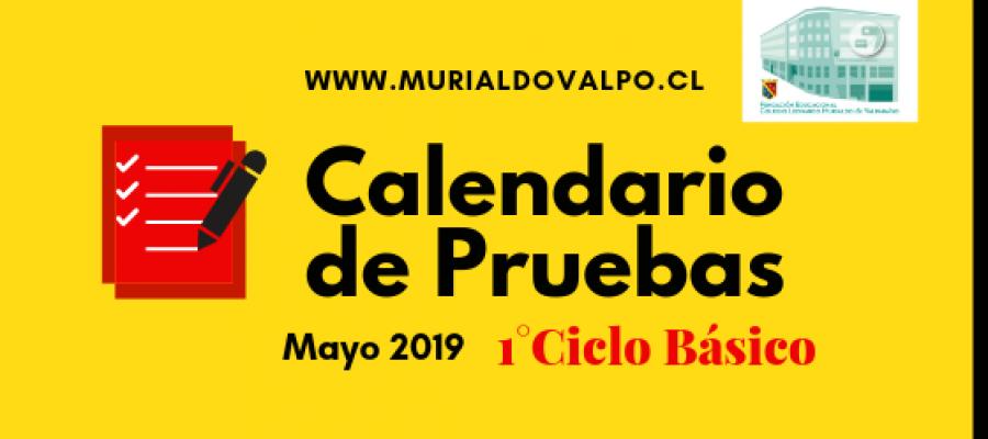 Calendario de Pruebas – Mayo – 1°Ciclo Básico