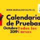 Calendarios de Pruebas – Octubre 2019